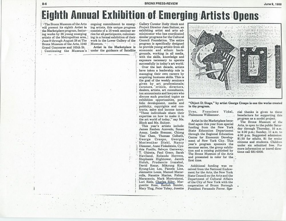 Bronx News review of show at Bronx Museum